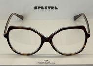 shop online new Oversized round eyeglasses with Spektre ALTEA havana glitter tips on otticascauzillo.com acquisto online nuovo occhiale  da vista oversize tondo con punte Spektre ALTEA havana glitter