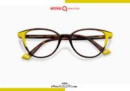 Acquista online su otticascauzillo.com il tuo nuovo occhiale da vista cat eye oversize Etnia Barcelona in acetato VIRGINIA col. HVYW